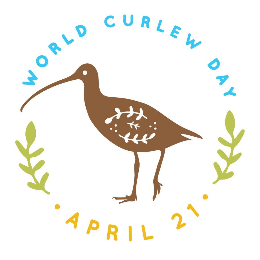 logo world curlew day